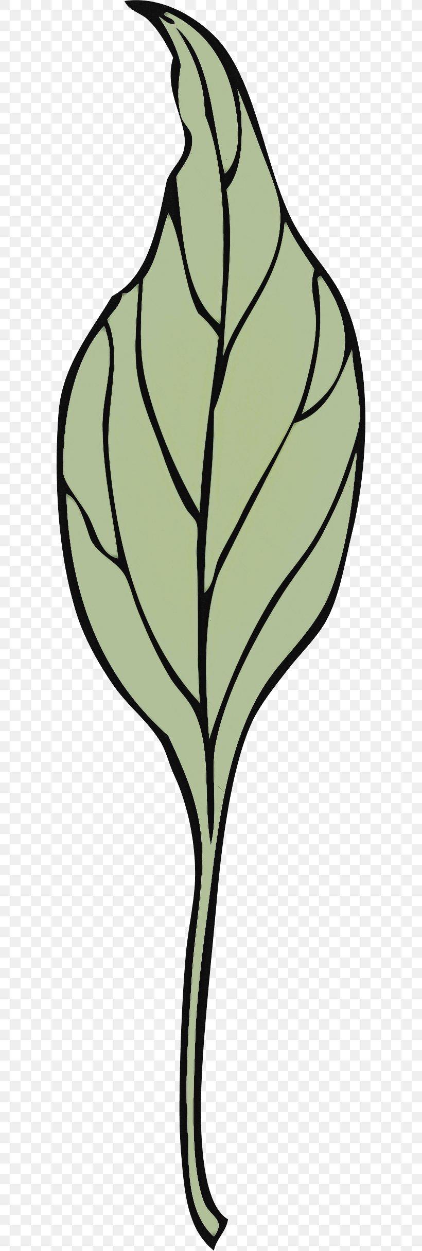 Leaf Plant Tree Flower Plant Stem, PNG, 600x2430px, Leaf, Blackandwhite, Flower, Plant, Plant Stem Download Free