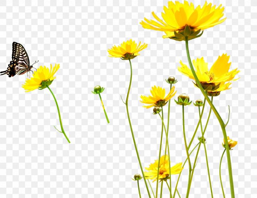 Yellow Flower Clip Art