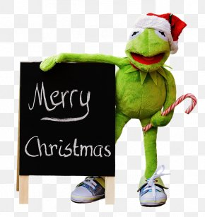 Kermit The Frog - Kermit The Frog Christmas Day Clip Art Stock.xchng Amphibians PNG
