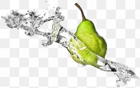 Fruit Water Splash File - Fruit Clip Art PNG
