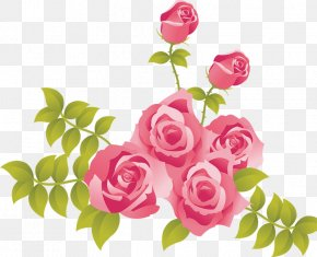 Pink Roses Painted Picture Clipart - Rose Pink Clip Art PNG