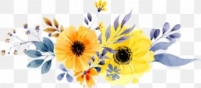 Vector Hand-painted Daisy Flower Pattern - Wedding Invitation Paper Flower Yellow Watercolor Painting PNG