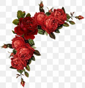 Flower - Floral Design Flower Rose Red Clip Art PNG