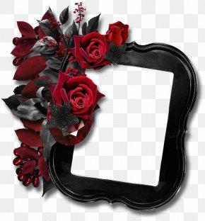 Floral Border Design Creative Floral Border Background Material - Black Rose Picture Frame Clip Art PNG