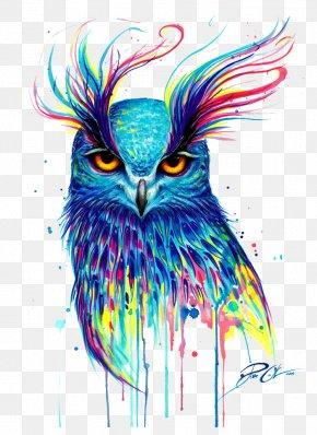 Owl - Owl T-shirt Bird Drawing Painting PNG