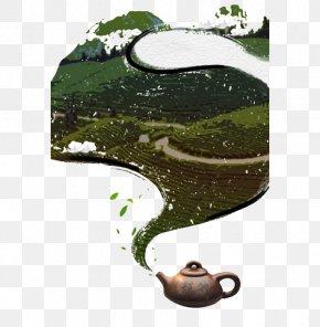 Hand-painted Tea Garden - Tea Garden Green Illustration PNG