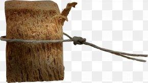 Tree Stump - Wood Tree Stump Icon PNG