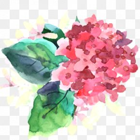 Bougainvillea - Watercolor Painting Flower Royalty-free PNG