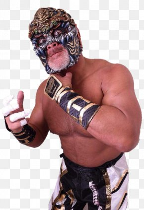 Japan - Japan Professional Wrestler Professional Wrestling World Championship Wrestling PNG
