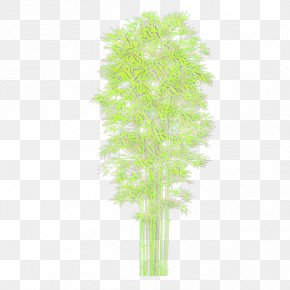 Tree Plant Stem - Plant Aquarium Decor Leaf Plant Stem Tree PNG