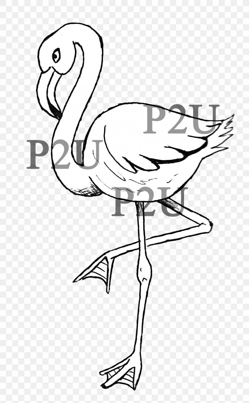 Line Art Drawing Cartoon Flamingo Clip Art Png 1790x2898px Line Art Art Artwork Beak Bird Download