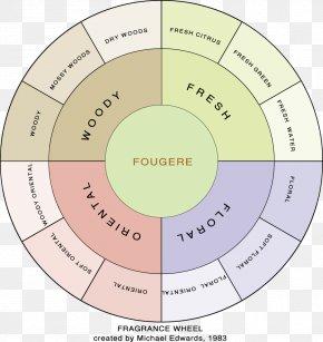 Perfume - Perfumer Fragrance Wheel Fougère Fragrance Oil PNG