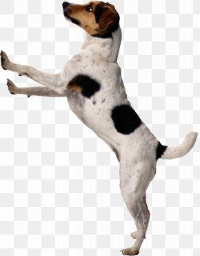 Dogs - Dog Puppy Housetraining Door Bells & Chimes Pet PNG