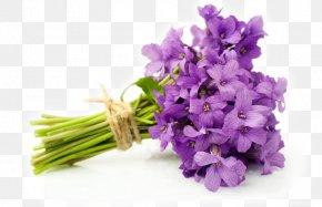 Violet - Flower Bouquet English Lavender Violet Cut Flowers PNG