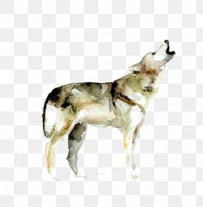 Watercolor Painted Wolf - Gray Wolf Watercolor Painting Printmaking Drawing PNG