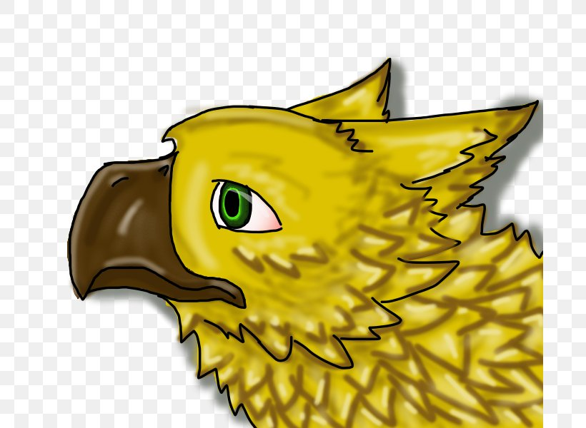 Beak Bird Of Prey Illustration Cartoon, PNG, 700x600px, Beak, Bird, Bird Of Prey, Carnivoran, Carnivores Download Free