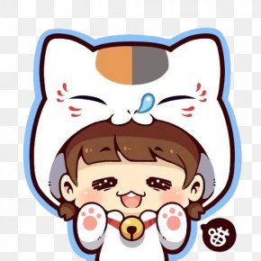Cat Headgear - Cuteness Facebook June 29 Wallpaper PNG