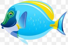 Fish Clip Art Image - Fish Clip Art PNG