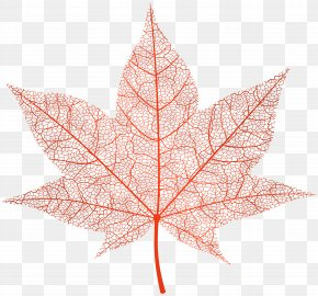 Transparent Red Autumn Leaf Clip Art Image - Image File Formats Lossless Compression PNG