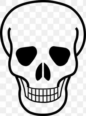Skull - Skull And Crossbones Skull And Bones Logo PNG