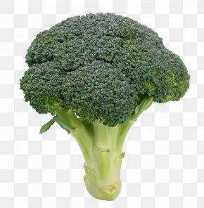 Broccoli - Broccoli Cauliflower Kale Vegetable Variety PNG