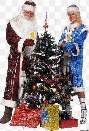 Christmas Grandfather - Christmas Tree Ded Moroz Snegurochka Christmas Ornament New Year Tree PNG