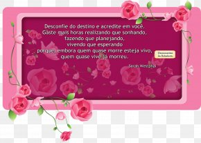 Personalidade - Greeting & Note Cards Picture Frames Floral Design Product PNG