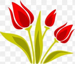 Tulip - Indira Gandhi Memorial Tulip Garden Euclidean Vector PNG