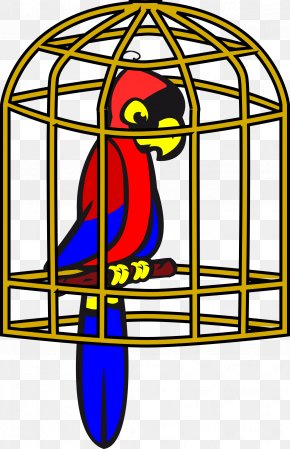 Sad Bird Cliparts - Parrot Lovebird Domestic Canary Clip Art PNG