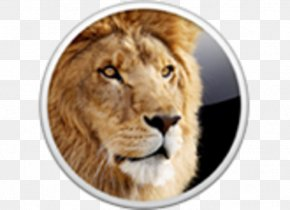 Mac Os X Lion - Mac OS X Lion MacOS Installation Operating Systems Apple PNG