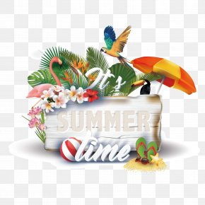 Vector Summer Time PNG