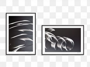 Brand Graphics Picture Frames Product Design Rectangle PNG