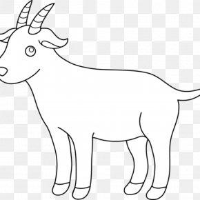 Sheep - Clip Art Paper Black Bengal Goat Sheep Pygmy Goat PNG