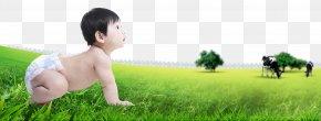 Crawling Baby - Lawn Human Behavior Toddler Nature Wallpaper PNG