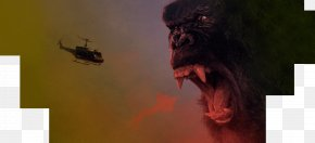 King Kong - King Kong Film Director MonsterVerse Monster Movie PNG