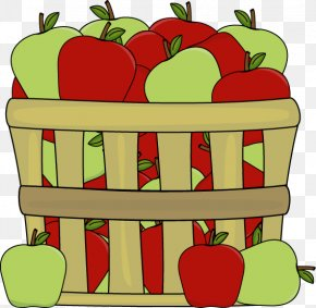 Apple Picking Clipart - Fruit Picking Cloverleaf Books: Fall Apples: Crisp And Juicy Clip Art PNG