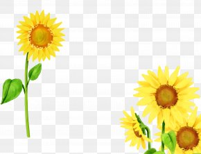 Sunflower 3 - Mother Family Child Illustration PNG