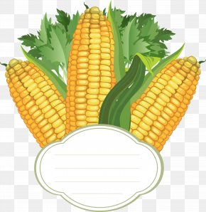 Corn - Corn On The Cob Vector Graphics Sweet Corn PNG
