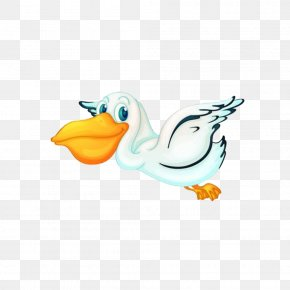 Toucan Flying Free Pull Material - Pelican Bird Clip Art PNG
