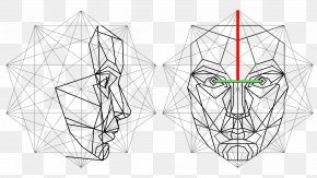 Angle - Golden Ratio Face Mathematics Proportionality PNG