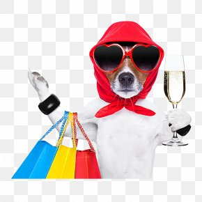 Dog Shopping - Dog Shopping Bag Stock Photography Pet Shop PNG