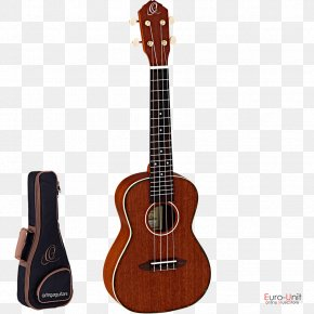 Traditional Virtues - Acoustic Guitar Ukulele Tiple Bass Guitar Cuatro PNG