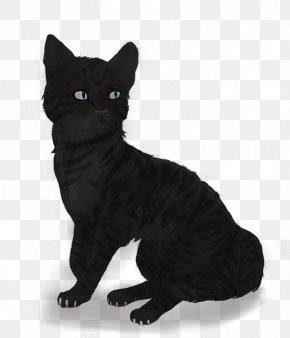 Horrible Black Cat - Bombay Cat Manx Cat European Shorthair American Wirehair Korat PNG