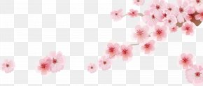 Romantic Sakura Japanese Cartoon Decoration - Cherry Blossom Cartoon PNG