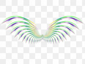 Fantasy Feather - Wing Feather Icon PNG