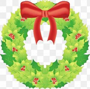 Plant Christmas Decoration - Christmas Decoration PNG