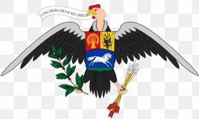 Alahly Flag - Maracaibo Coat Of Arms Of Venezuela Coat Of Arms Of Saint Vincent And The Grenadines Heraldry PNG