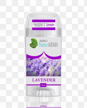 Lavender - Lavender Lotion Violet Deodorant Gum Trees PNG