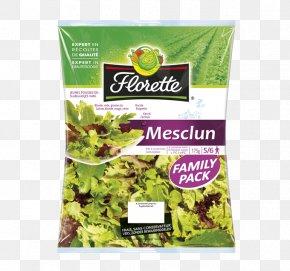 Laitue - Lettuce Spring Greens Vegetarian Cuisine Food Herbalism PNG