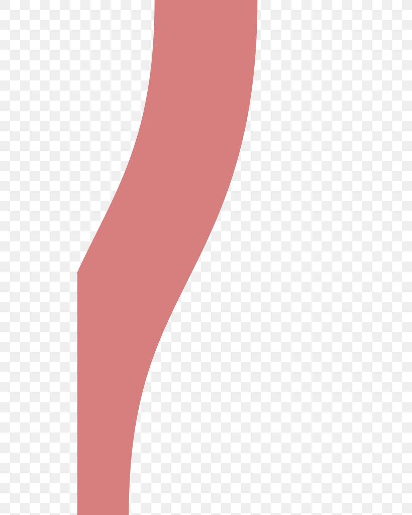 Product Design Font Line, PNG, 512x1024px, Shoe, Arm, Human Leg, Joint, Neck Download Free